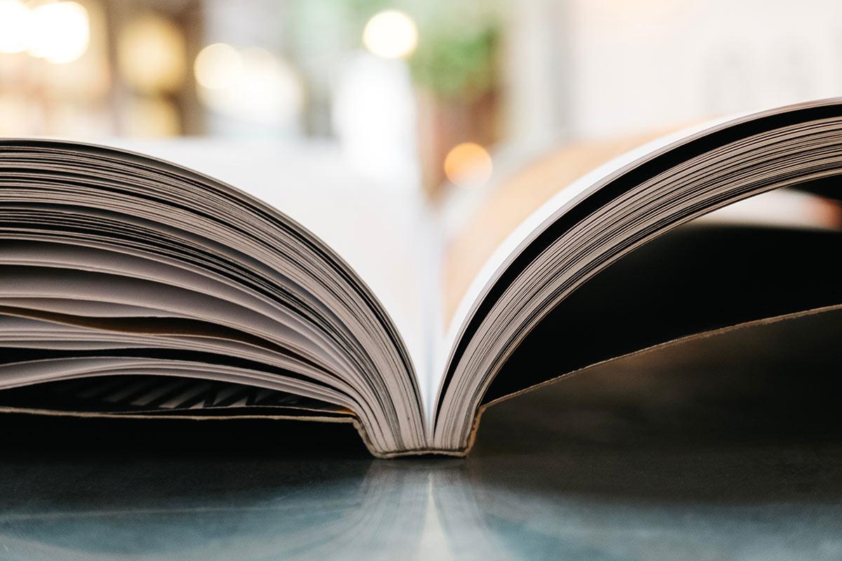 Mejores libros de finanzas para principiantes